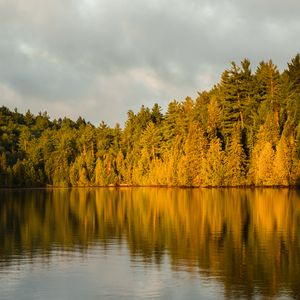 Preview wallpaper forest, trees, lake, twilight, landscape