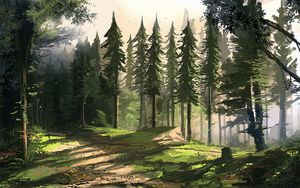 Preview wallpaper forest, trees, nature, landscape, art