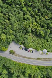 Preview wallpaper forest, trees, road, parking, cars, aerial view