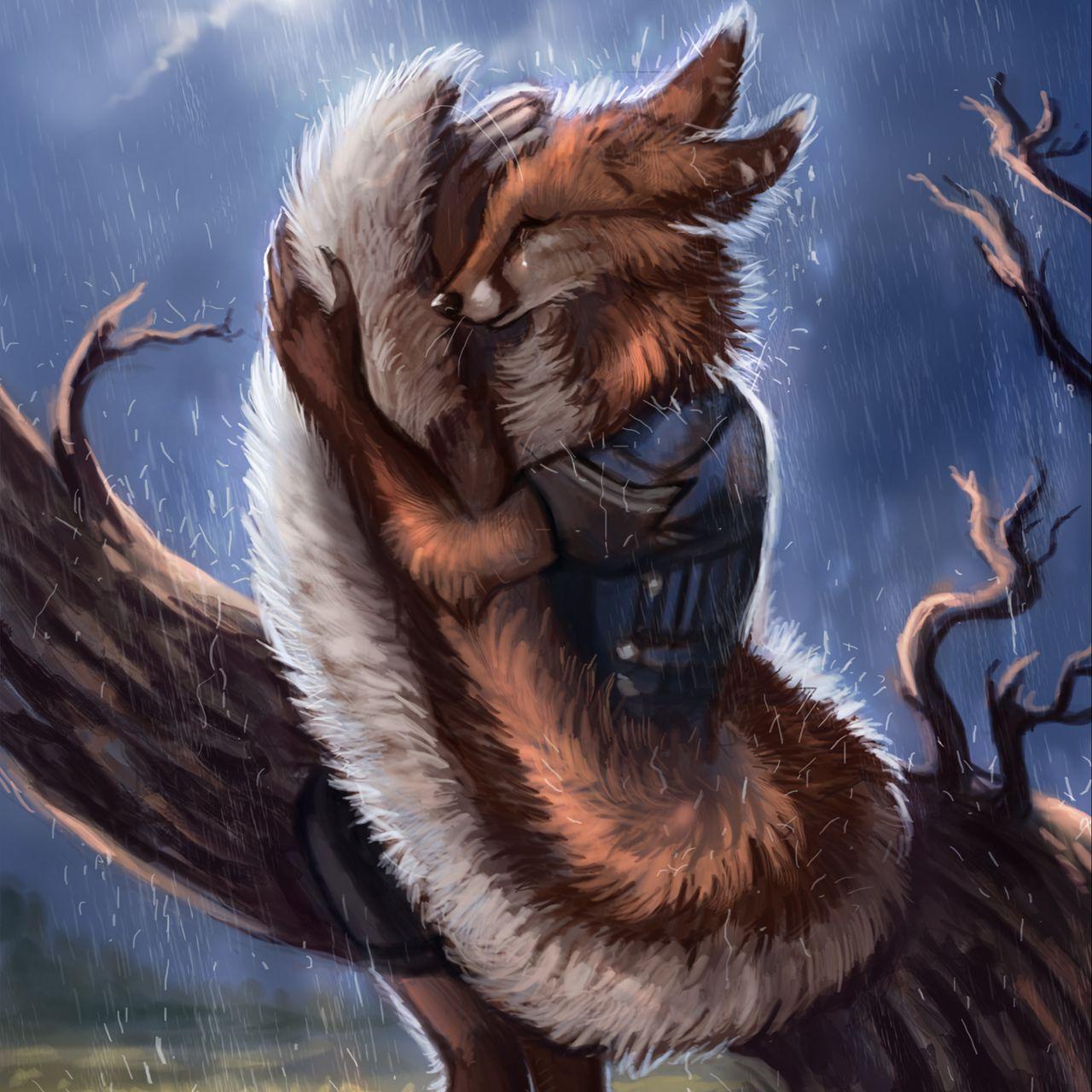 1280x1280 Wallpaper fox, tail, rain, hide, sadness