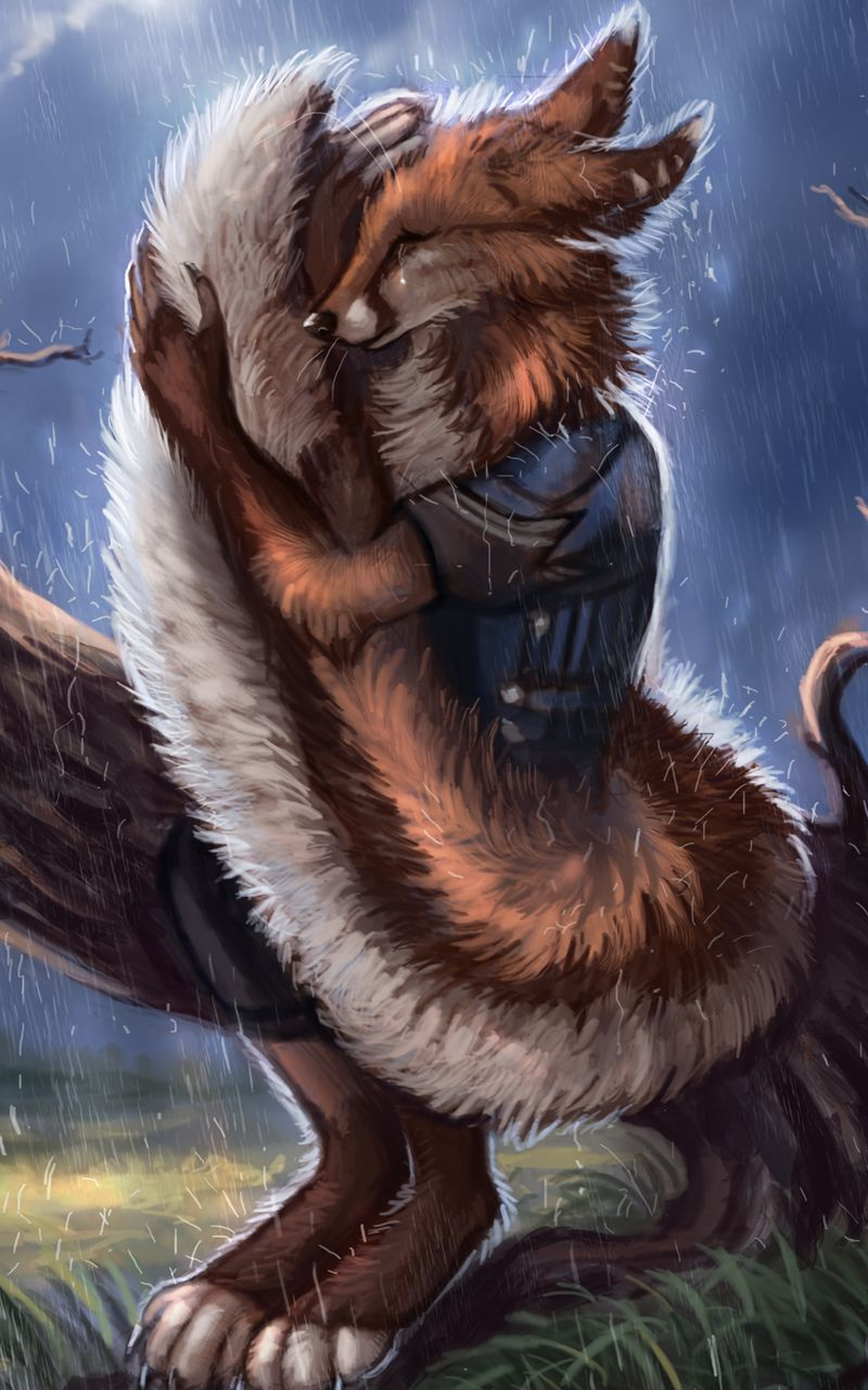 800x1280 Wallpaper fox, tail, rain, hide, sadness