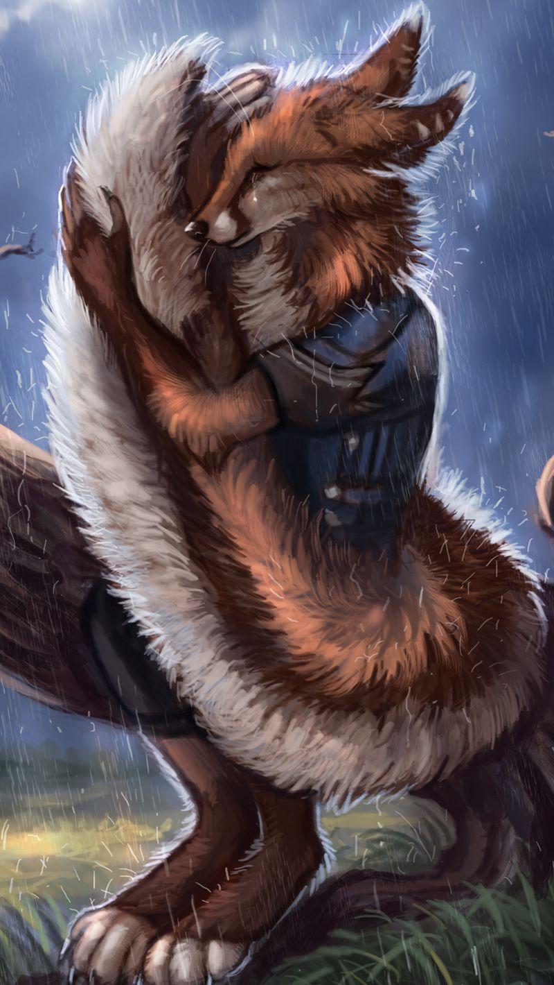 800x1420 Wallpaper fox, tail, rain, hide, sadness