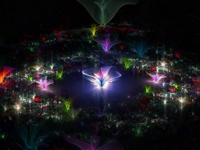 800x600 Wallpaper fractal, flying, dark, background