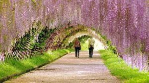 Preview wallpaper garden, spring, people, walk, flowering