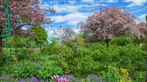 Preview wallpaper garden, trees, flowers, shrubs, landscape, hdr