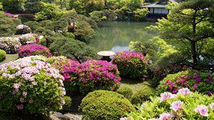 Preview wallpaper garden, vegetation, registration, flowers, bushes