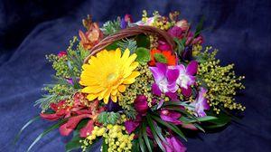 Preview wallpaper gerbera, chrysanthemums, mimosa, flowers, shopping, composition, design