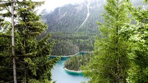 Preview wallpaper germany, bavaria, munich, forest, river, trees