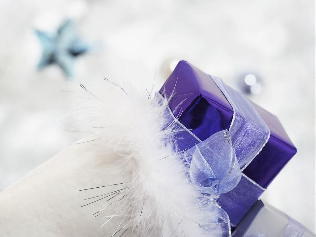 1024x768 Wallpaper gift, ribbon, feathers, holiday