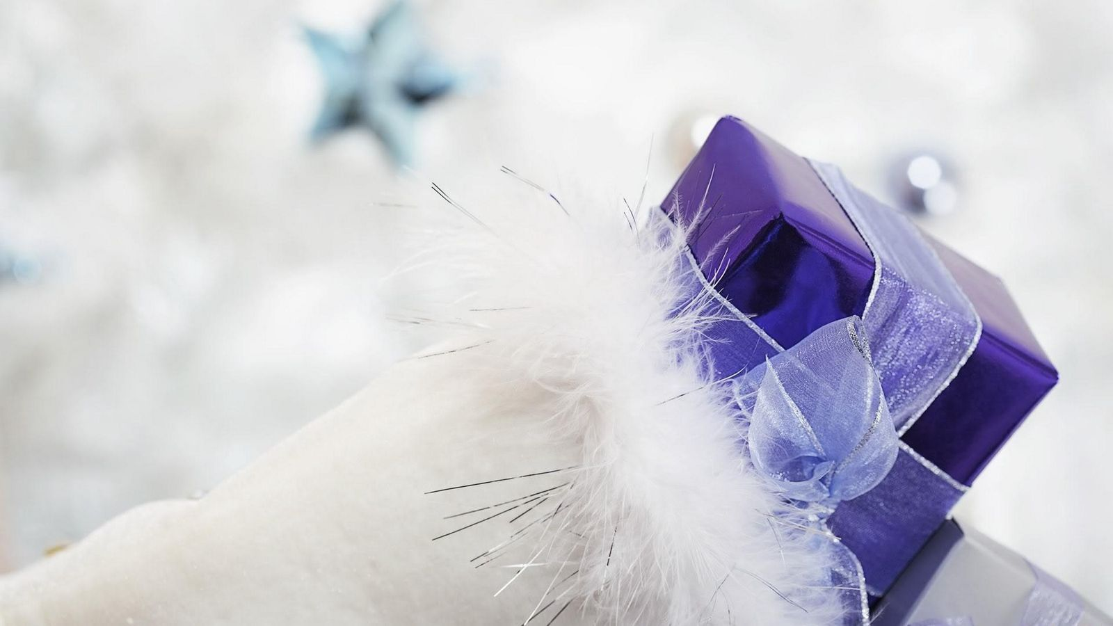 1600x900 Wallpaper gift, ribbon, feathers, holiday