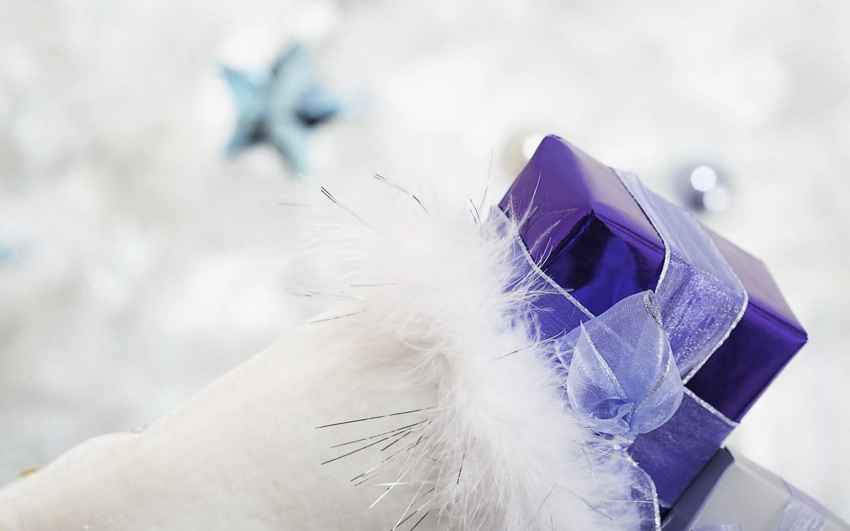 1680x1050 Wallpaper gift, ribbon, feathers, holiday