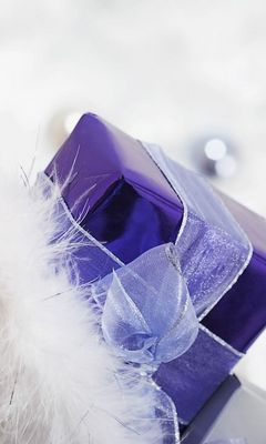 240x400 Wallpaper gift, ribbon, feathers, holiday