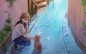 Preview wallpaper girl, cat, water, street, anime