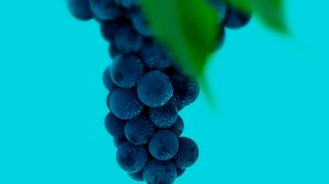 Preview wallpaper grapes, bunch, berries, macro, wet