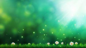 Preview wallpaper grass, daisies, light, lights, art