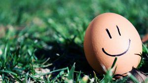 Preview wallpaper grass, egg, smiley, smile, humor, macro
