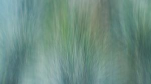 Preview wallpaper grass, wind, distortion, abstraction