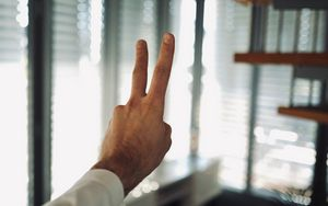 Preview wallpaper hand, fingers, gesture, peace