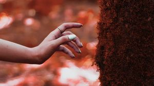 Preview wallpaper hand, tree, moss, touch