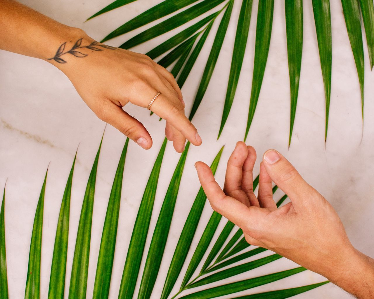 1280x1024 Wallpaper hands, touch, love, leaves, palm