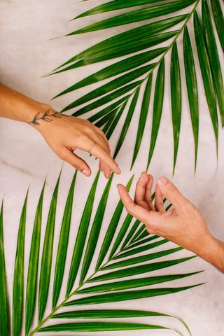 320x480 Wallpaper hands, touch, love, leaves, palm