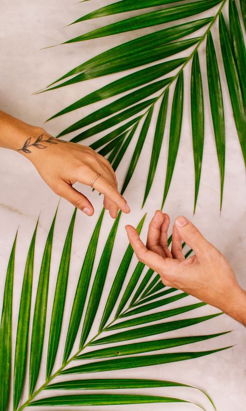 480x800 Wallpaper hands, touch, love, leaves, palm