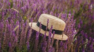 Preview wallpaper hat, lavender, flowers, wildflowers