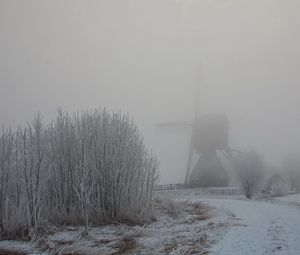 Preview wallpaper haze, fog, winter, mill, bushes, snow, hoarfrost