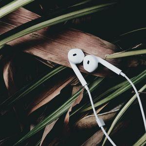 Preview wallpaper headphones, music, audio, leaves