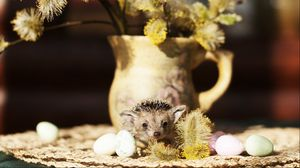 Preview wallpaper hedgehog, quail eggs, vase, willow