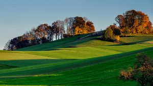 Preview wallpaper hills, grass, sky, trees