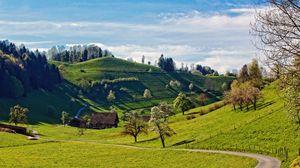 Preview wallpaper hills, landscape, trees, grass