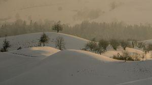 Preview wallpaper hills, trees, snow, landscape, winter