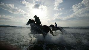 Preview wallpaper horse, rider, riders, sea, spray