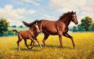 Preview wallpaper horse, stallion, grass, meadow, running