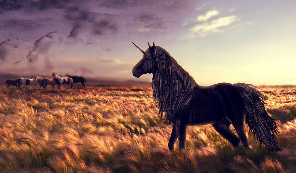 1024x600 Wallpaper horse, unicorn, golf, art, grass, wind