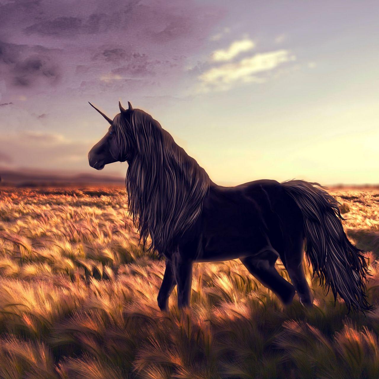 1280x1280 Wallpaper horse, unicorn, golf, art, grass, wind