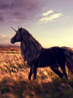 240x320 Wallpaper horse, unicorn, golf, art, grass, wind