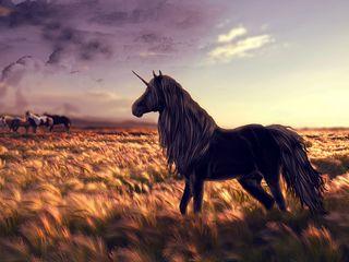 320x240 Wallpaper horse, unicorn, golf, art, grass, wind