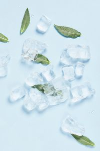 Preview wallpaper ice, mint, leaves, cold, macro
