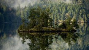 Preview wallpaper forest, lake, reflection, island, mist 1920x1080