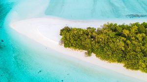 Preview wallpaper island, aerial view, ocean, tropics, palm trees, beach