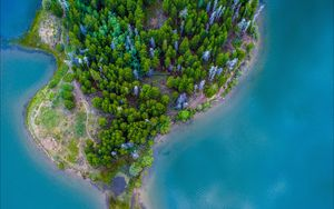 Preview wallpaper island, ocean, aerial view, paradise, trees