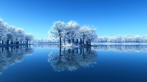 Preview wallpaper island, trees, frost, lake, frozen, cleanliness, surface