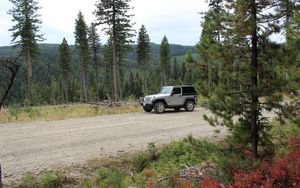 Preview wallpaper jeep, car, gray, road, forest