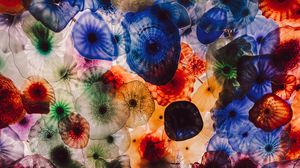 Preview wallpaper jellyfish, colorful, creatures