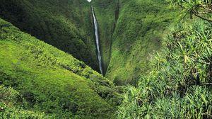 Preview wallpaper jungle, falls, greens, trees, vegetation