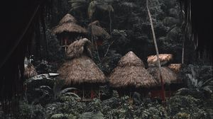 Preview wallpaper jungle, palm trees, huts, houses, tropics