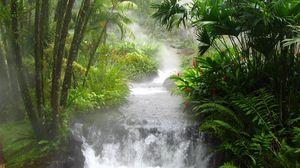 Preview wallpaper jungle, river, falls, vegetation, flowers, fern, stream