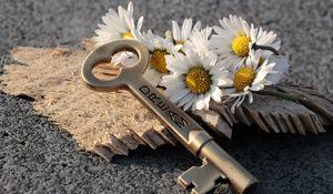 Preview wallpaper key, daisies, inscription, dream